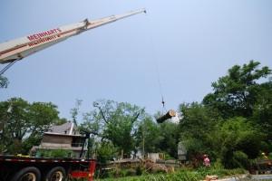 Crane8